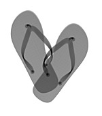 Pair of flip-flops, X-ray