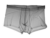 Boxer shorts, X-ray