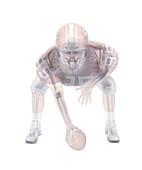 American football player skeleton, X-ray