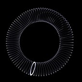 Slinky in a circle, X-ray