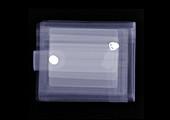 Empty wallet, X-ray