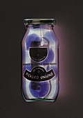 Jar of pickled onions, X-ray