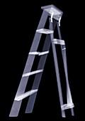 Ladder, X-ray