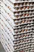 Palette von Eierkartons mit braunen Eiern