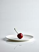 Eine Kirsche auf weißem Teller vor weißem Hintergrund