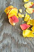 Blütenblätter von Rosen auf Draht fädeln
