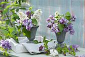 Romantische Fliedersträuße in Pokalen als Vasen, Zweig von Klettergurke mit Blüten
