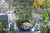 Schachbrettblumen in silberner Schale, silberne Osterhasen und Ostereier