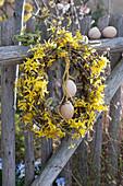 Kranz aus Zweigen von Goldglöckchen und Weide mit Ostereiern geschmückt am Zaun