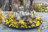 Drahtkorb mit Ostereiern in Kranz aus Goldglöckchen und Kätzchenweide