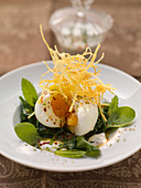A soft-boiled egg on mint spinach with potato straw