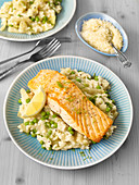 Fennel risotto with salmon fillet