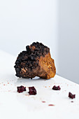 Chaga fungus (a traditional medical anticarcinogen)