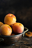 Aprikosen mit Wassertropfen in Metallschale