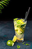 Mohito drink