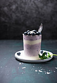Vegan layered dessert with natural soy and blueberry yogurt
