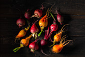 Different types of beet