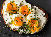 Egg sandwich with chives