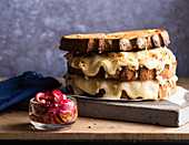 Cheese sandwich with red onion salad