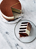 Chocolate Buttermilk Ombre Cake