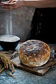 Sourdouh bread