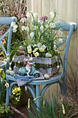 Holzkiste mit Schachbrettblumen und Hornveilchen 'Sunny Side Up' mit Ostereiern und Osterhase