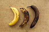 Three bananas in different stages of ripening