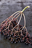 A sprig of elderberries on a metal plate