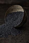 Upturned metal bowl with black lentils on a dark metal background