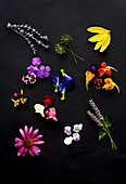 Edible flowers - lavender, dill flower, sunflower petals, dianthus, butterfly pea, nasturtium, gem marigold, snap dragon, anise hyssop, echinacea, pansy