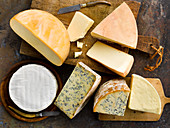 Cheese Group
