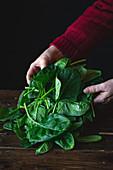 Frau legt Spinatblätter auf Holztisch