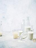Plant 'milk'