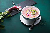 Vegan red radish cream soup with popped amaranth, chia seeds, cress and garlic oil