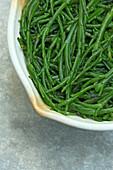 Sea Bean Salicornia