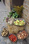 Biogemüse und Äpfel in Körben auf einem Bauernhof