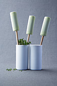 Thyme and sour cream popsicles