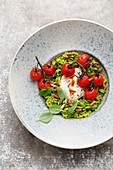 Pasta sotto with basil, burrata and braised tomatoes