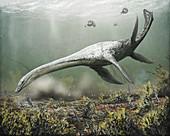 Attenborosaurus plesiosaur, illustration