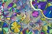 Ferrous sulphate, polarised light micrograph