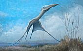 Hatzegopteryx pterosaur in flight illustration