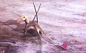 Rhamphichnus pterosaur, illustration