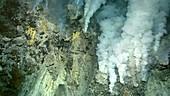Hydrothermal vent, Kawio Barat submarine volcano, Indonesia