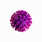 Coronavirus, illustration