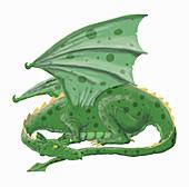 Green dragon, illustration