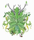 Green man, illustration