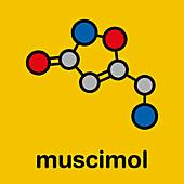 Muscimol molecule, illustration