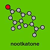 Nootkatone natural insect repellent molecule, illustration