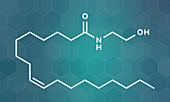 Oleoylethanolamide molecule, illustration