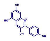 Pelargonidin pigment molecule, illustration